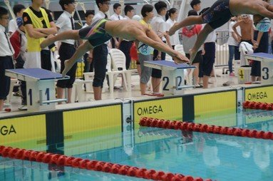 Inter-School Swimming Competition - Photo - 2